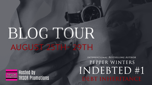 indebted tour banner