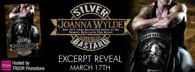 silver bastard excerpt reveal banner